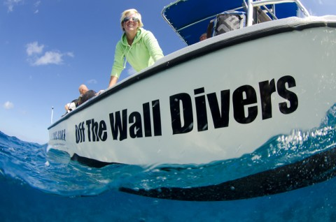 Off The Wall Divers 28 foot Parker