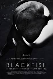 Blackfish Movie